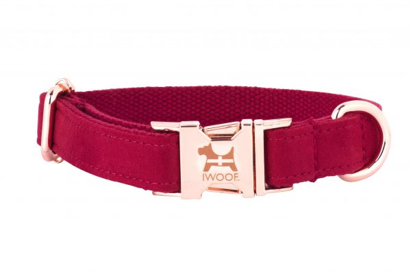 Cornish Red designer dog collar and lead by IWOOF