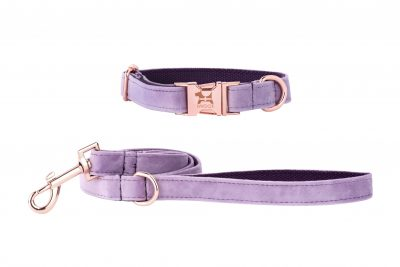 Lavender Cornish designer dog collar and lead hand made by IWOOF