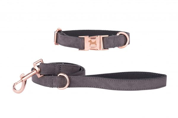 Dolphin designer dog collar and lead with British flag in rose gold by IWOOF