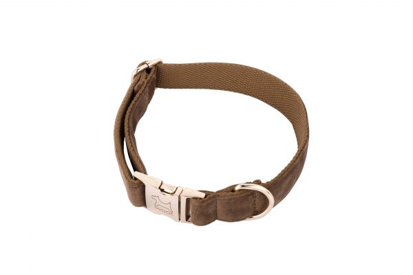 Cappuccino designer dog collar by IWOOF