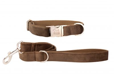 Cappuccino designer dog collar and lead by IWOOF