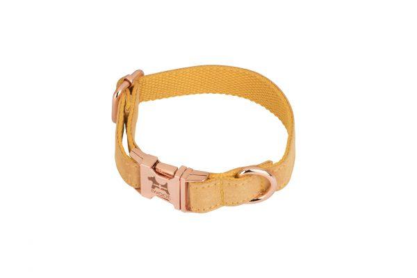 cornish daffodil designer dog collar and lead set by IWOOF