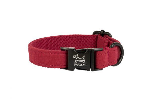 Pillar Box Red designer dog collar by IWOOF