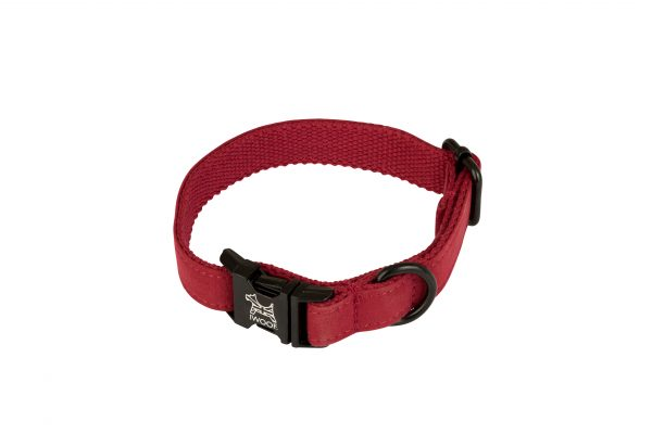 Pillar Box Red dog collar by IWOOF